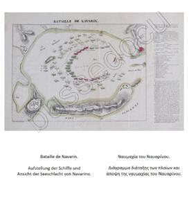 04 Navarino